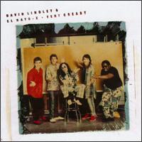 David Lindley - Very Greasy