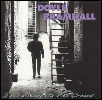 Doyle Bramhall - Bird Nest on the Ground