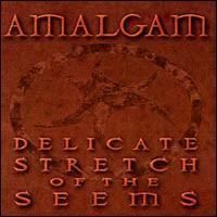Amalgam - Delicate Stretch of the Seems