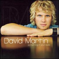 David Martin - Something in Your Eyes