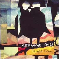Mezzanine Owls - Slingshot Echoes