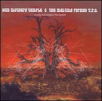 Acid Mothers Temple - Glorify Astrological Martyrdom