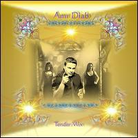 Amr Diab - Tender Mix