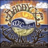 Daddy X - Organic Soul